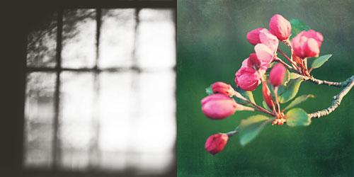 Diptych-1